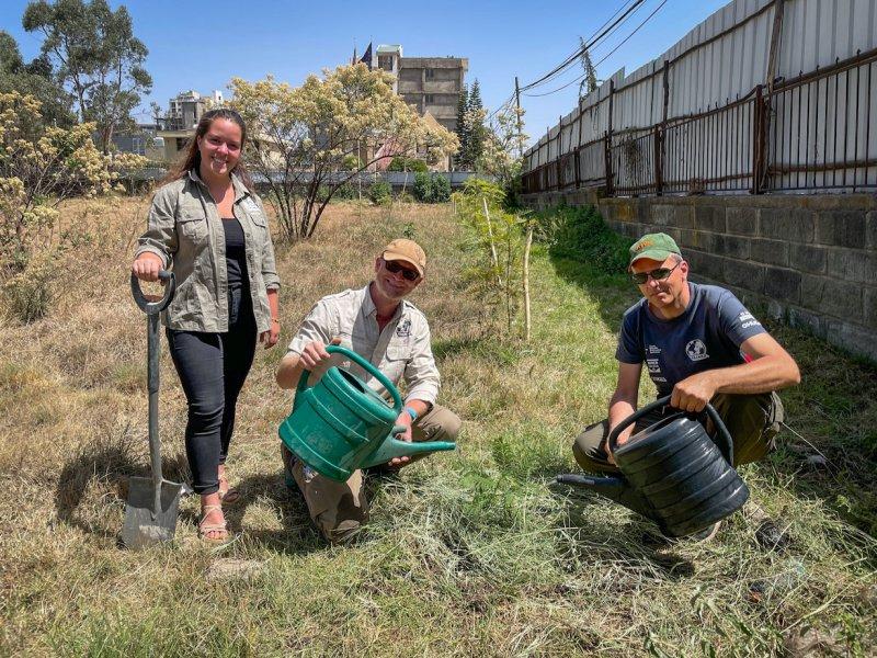 Během expedice tým vysazuje památeční stromy. Jeden byl vysazen také v Addis Abeba/Etiopie, a to na území České republiky. Zleva: Terka Flesarová, Marek Havlíček, Maroš Podhradský