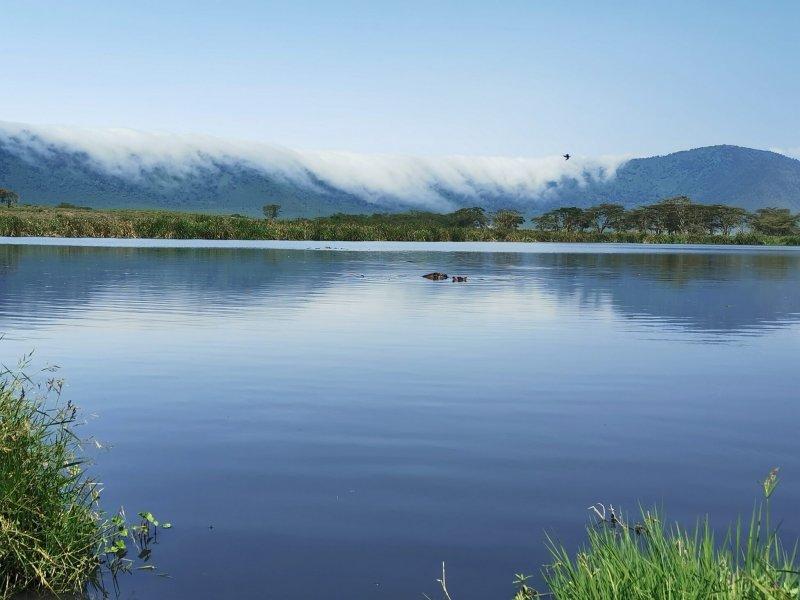Jezero hrochů.